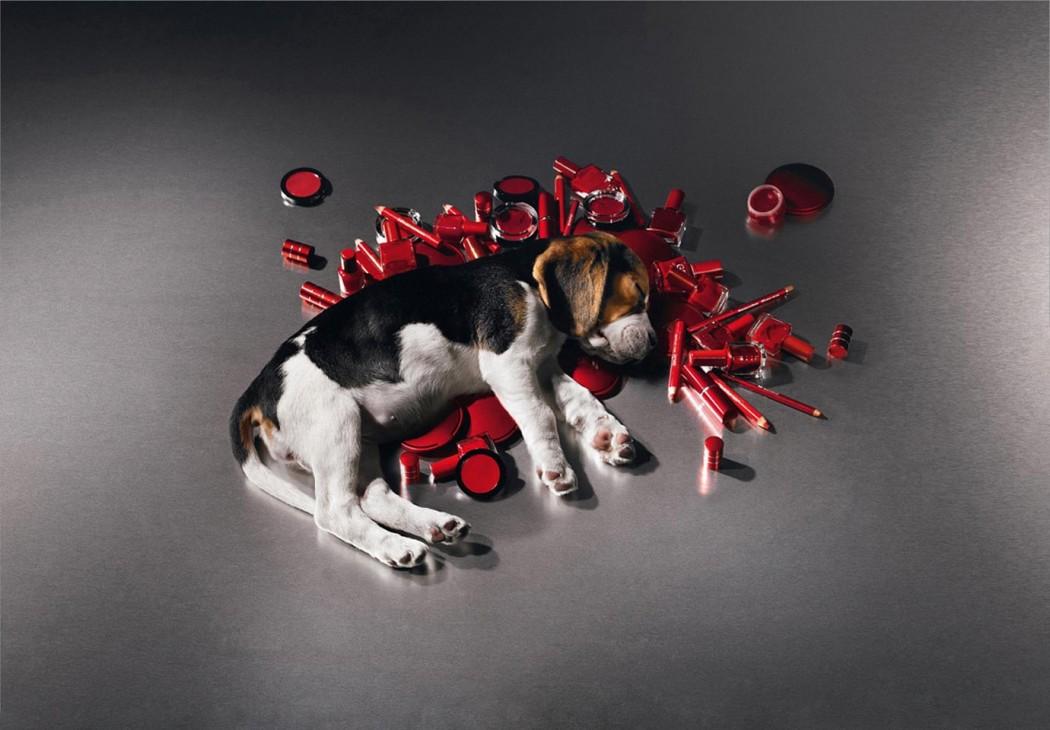 magazynkobiet.pl - testowanie kosmetykow 1050x730 - Testowanie kosmetyków na zwierzętach. Obojętność boli