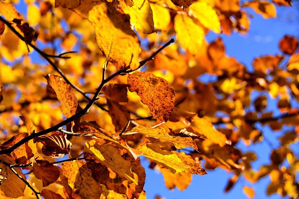 magazynkobiet.pl - mountains 1012425 960 720 - Skuteczne sposoby na jesienną pielęgnację skóry