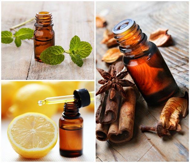 magazynkobiet.pl - essential oils - Odmładzające tłuszcze? W czym tkwi geniusz naturalnych olejków?