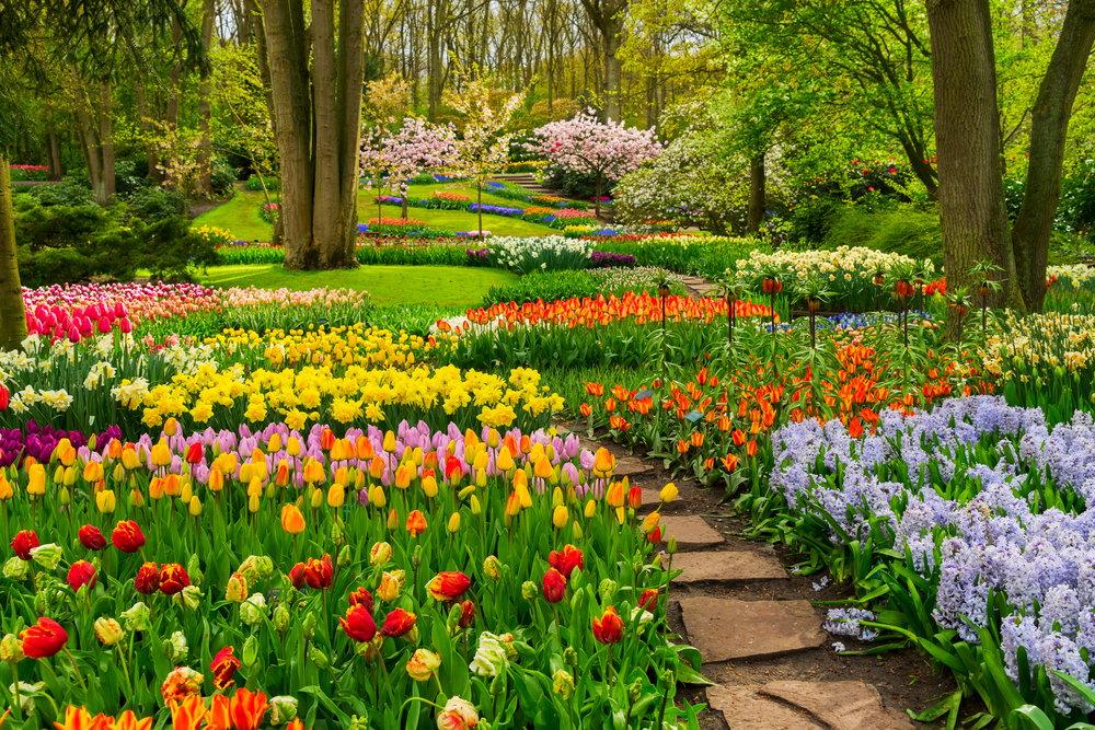 magazynkobiet.pl - 2 czas na porzadki w twoim ogrodzie - Czas na porządki w Twoim ogrodzie