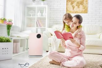 magazynkobiet.pl - oczyszczacz powietrza klarta forste 2 rose w pokoju 330x220 - Nadmierne wypadanie włosów – przyczyny i sposoby ochrony