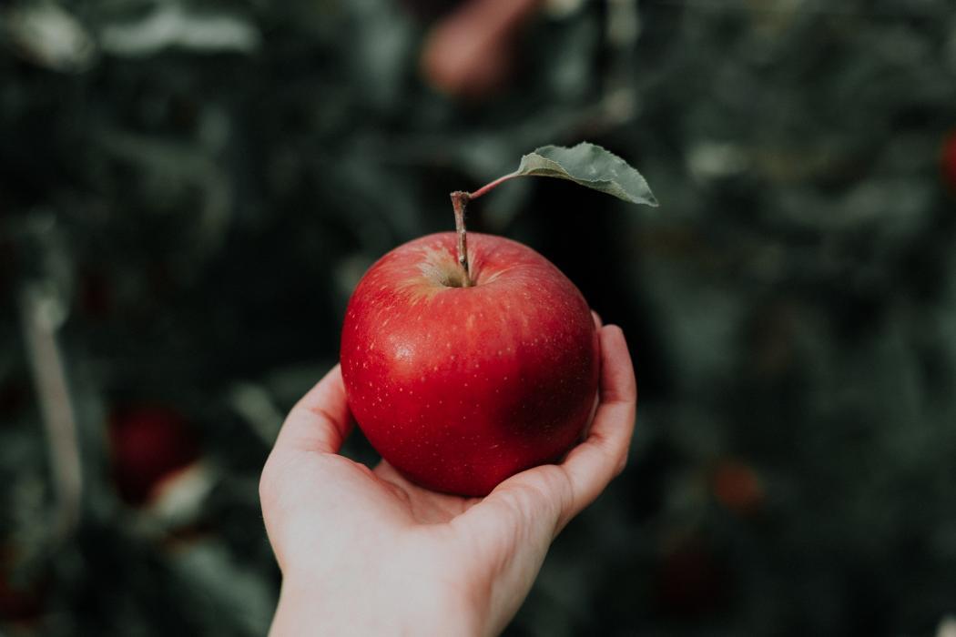 magazynkobiet.pl - priscilla du preez CoqJGsFVJtM unsplash 1050x700 - Maska jabłkowa