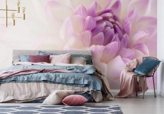 magazynkobiet.pl - image1 330x231 - Floralna rewolucja – wybierz fototapetę w kwiaty, która odmieni Twoje mieszkanie!