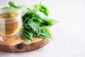 Pokrzywa w suplementacji, czyli staropolskie zioło na topie