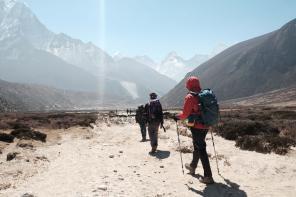 Kijki trekkingowe – doskonałe rozwiązanie na piesze wycieczki!
