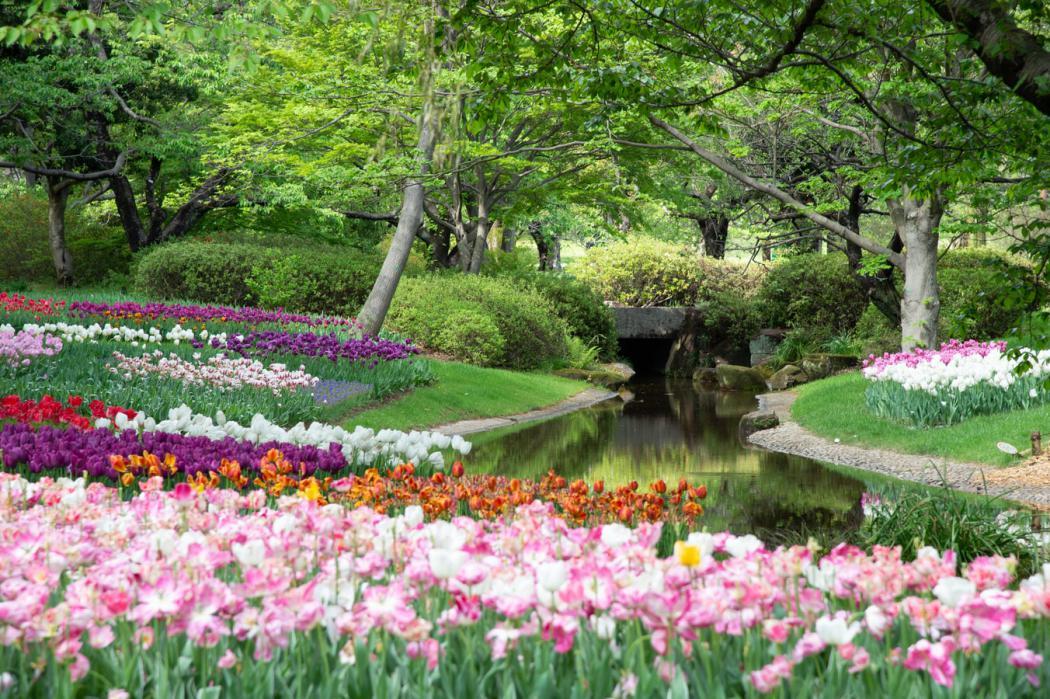 magazynkobiet.pl - photo 1598368457390 95a84ecb87c4 1050x699 - Jak przez cały rok odpowiednio pielęgnować ogród?