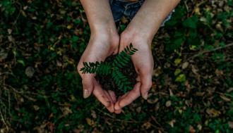 magazynkobiet.pl - photo 1542601906990 b4d3fb778b09 330x189 - Jakie wartości kryją ekologiczne środki czystości?