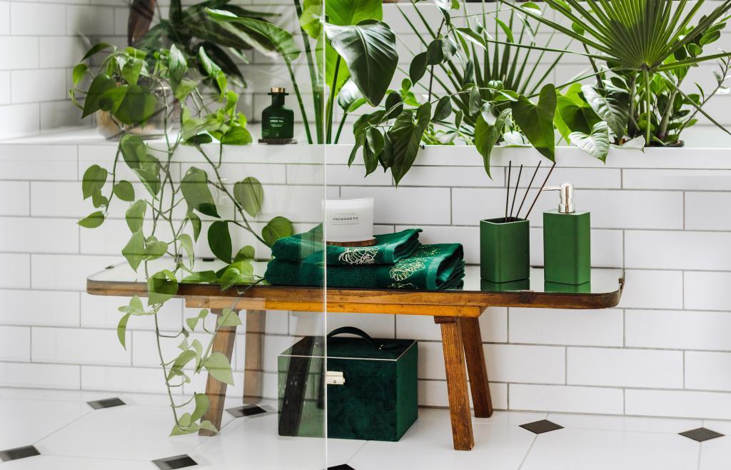 magazynkobiet.pl - 66ee3475a943df66ff5bc5f6cb56f427 1024x658 - W rytmie natury – zalety roślin w mieszkaniu